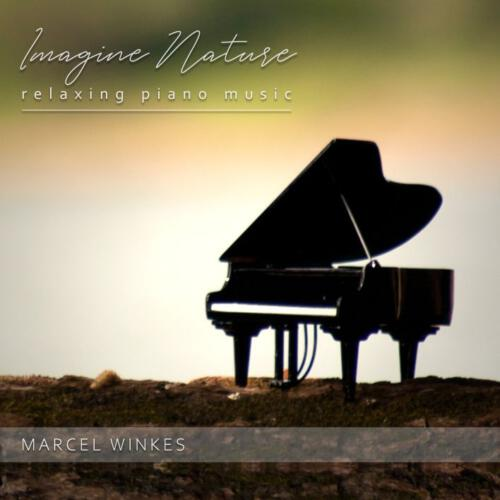 Albumhoes piano